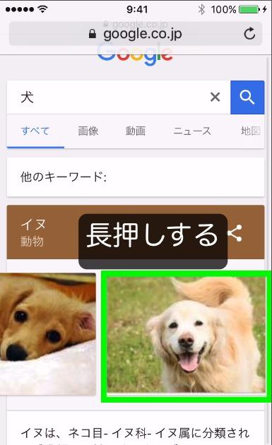 Webページの画像を保存する方法1
