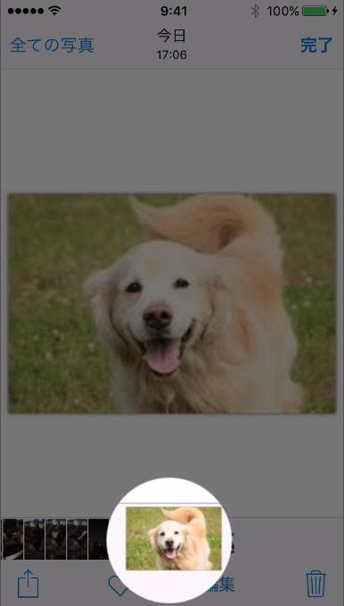 Webページの画像を保存する方法3