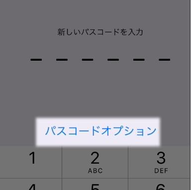 パスコードオブション1