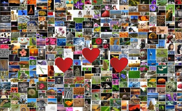 写真を「お気に入り」で分類・整理する方法