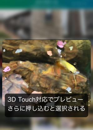 Lively LivePhotoの変換方法2