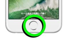 Tapticエンジン搭載の「ホームボタン」