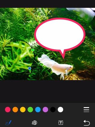 写真アプリ機能Markup