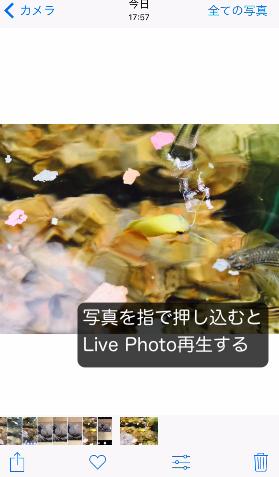 Live Photoの使い方