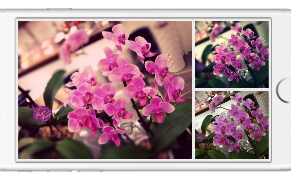 iOS10の写真アプリでスライドショーを作って楽しく遊んでみよう